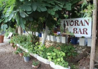 Yoran Bar