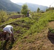 Ogzala Çiftliği Konaklama