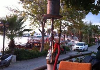 Apollonik Cafe