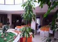 Pi�kin Otel