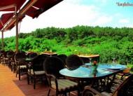 bah�e restaurant