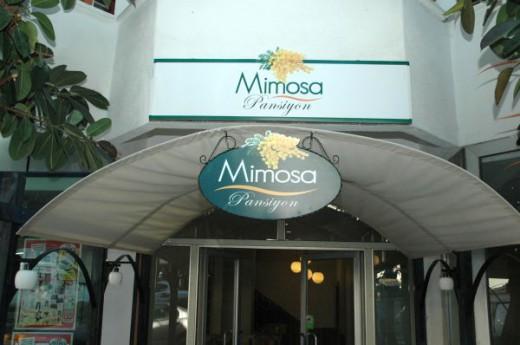 Mimosa Pansiyon