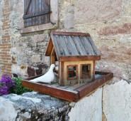 Florina House