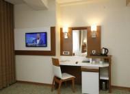 Sel�uk Hotel �ems-i Tebrizi