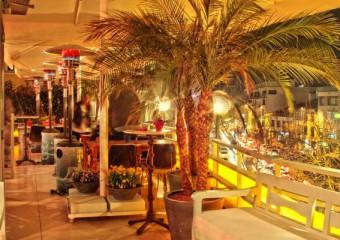 Fink Roof Lounge Bar