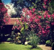 Botanik Park Motel