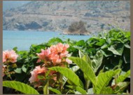 Yunus Apart Selimiye