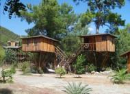 Jungle Bells Hostel