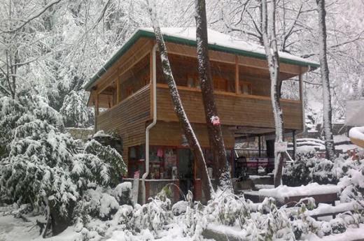 Yayla Alabal�k Restaurant ve Butik Otel