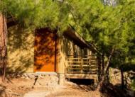 Tree Houses Pansiyon