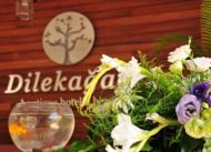 Dilek A�ac� Boutique Otel