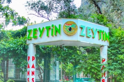 Zeytin Pansiyon Olimpos