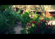 Kabak Natural Life