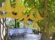 Ta� Ev G�m��l�k Cafe Restaurant