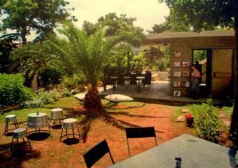 Bah�ede Sinek Kafe