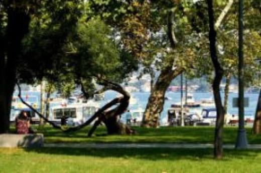 Bebek Park�