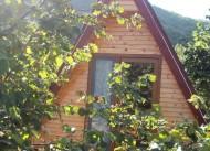 A�va Tree House