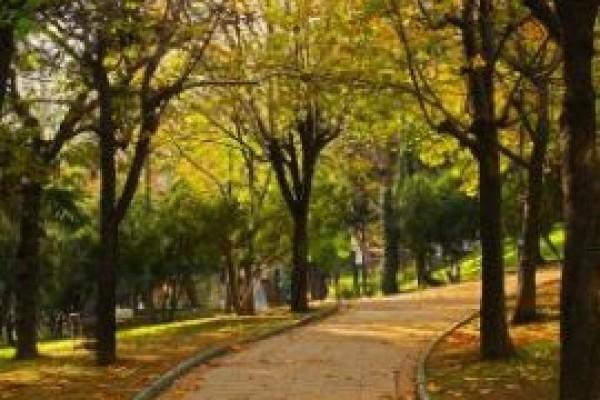 Abbasa�a Park�