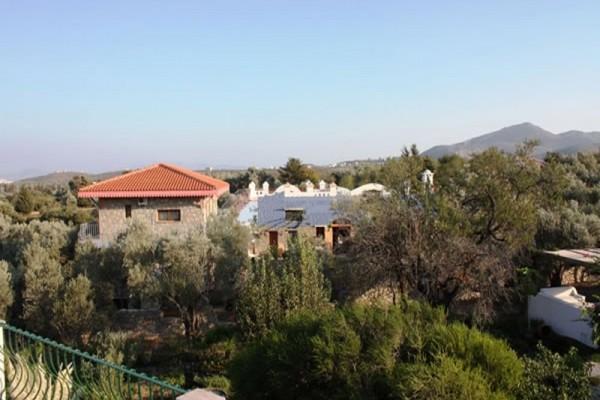 Olive Farm Guest House Of Datça