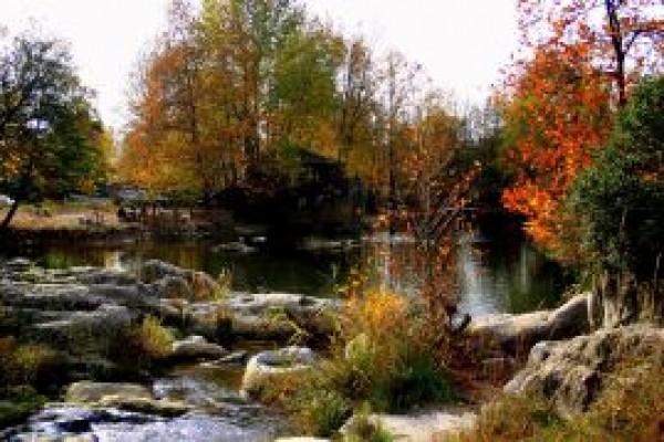 Ball�kayalar Tabiat Park�