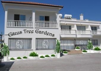 Citrus Tree Gardens