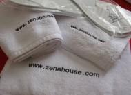Zena House
