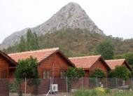 Portakal Bah�esi