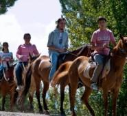 Daday Atlı Turizm Doğal Yaşam Çiftliği