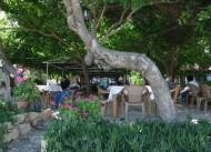 Berke Cafe Pansiyon