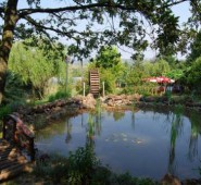 Doğa Şara Butik Hotel