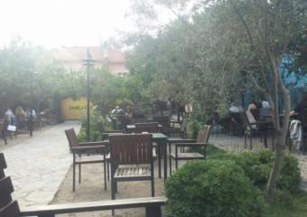 Bah�e Cafe & Bar