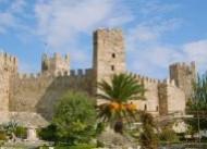 Pitane Antik Kenti