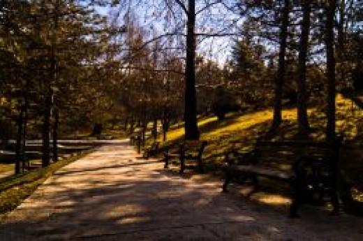 Se�menler Park�