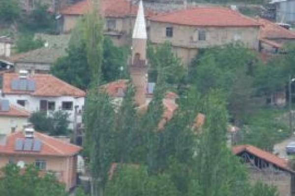 Pazar K�y�