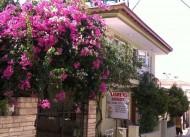 Flowers Pansiyon