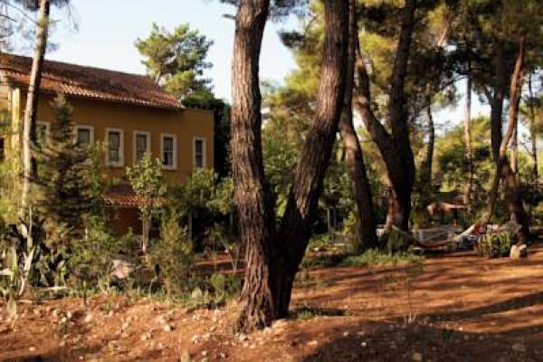 Daphne House
