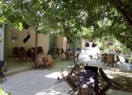 Ta�han Hotel & Cafe