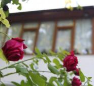 Güdükoğlu Saklı Bahçe Aile Pansiyonu