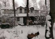 8 kisilik Ortanca Villa