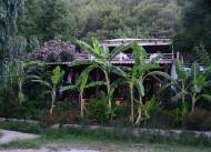 Sazl�k China House