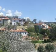 Chateau Triopia Tatil Evleri