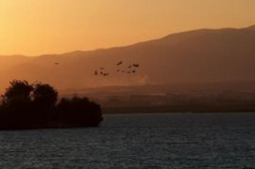 Yedi Ku�ular Ku� Cenneti