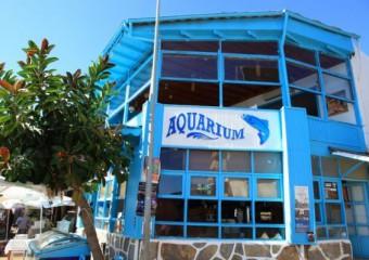 Aquarium Restaurant - G�m��l�k