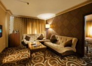 Hotel B�y�k �ahinler