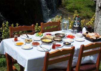 Sapanca Sa��ro�lu Restaurant