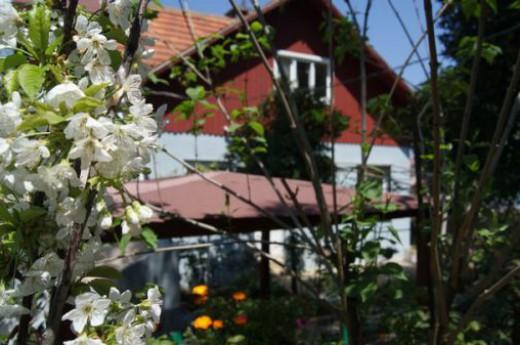 Ece Butik Pansiyon