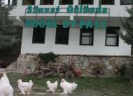 Do�al Ya�am Oteli