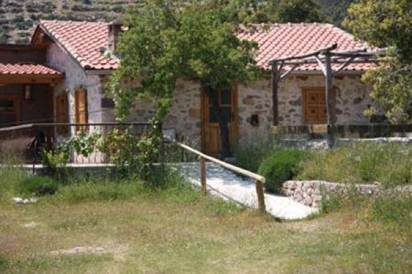 Black Tree Farm & Cottages