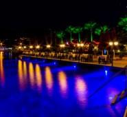 Palmetto Resort Hotel