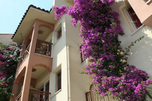 �zhan Apartments